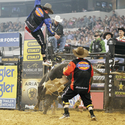 Dickies-DuraBullfighter-Jesse-Byrne-2