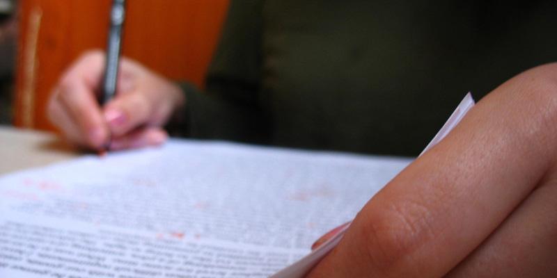 Essay on president