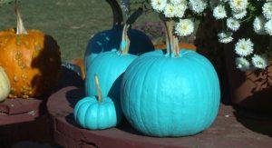 Teal-Pumpkin-Project_2