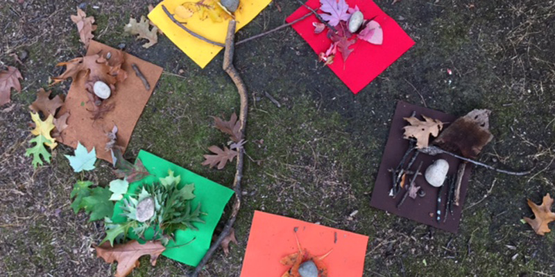 ONLINE_Exploring-the-Woods-for-Color-at-Tinkergarten-Class