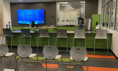 Lucas-County-Library-Parenting