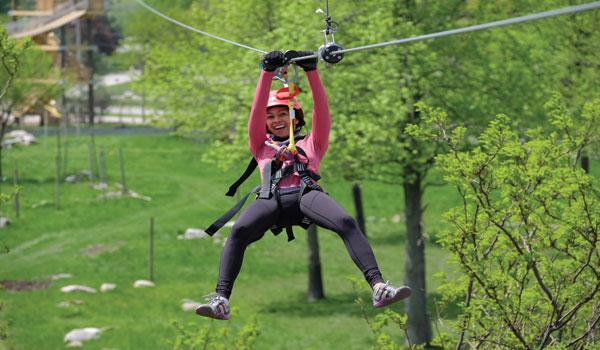 zoo-aerial-rope