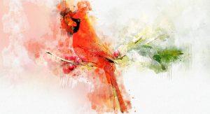 bird-art
