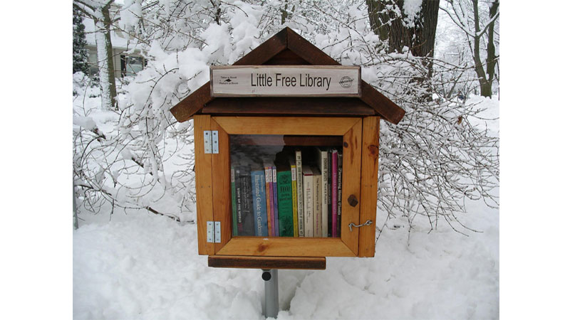 littlelibrarysnow