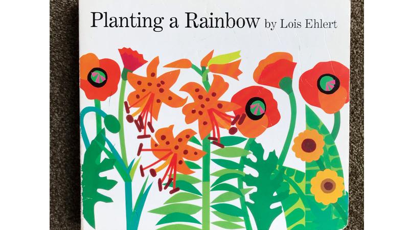Painting-a-Rainbow