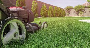 lawn-mower-PZXWR37